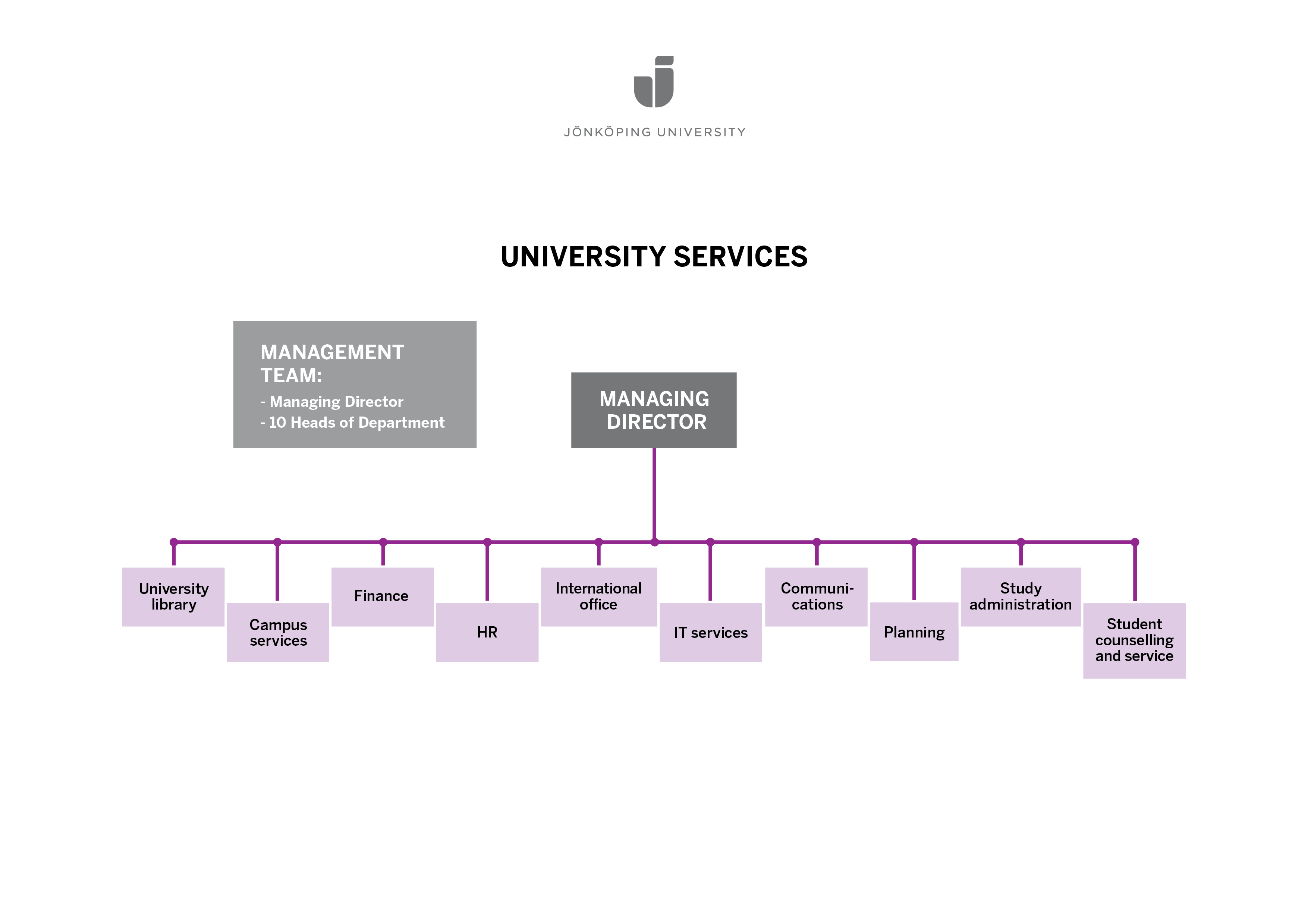Organisational sketch for university services