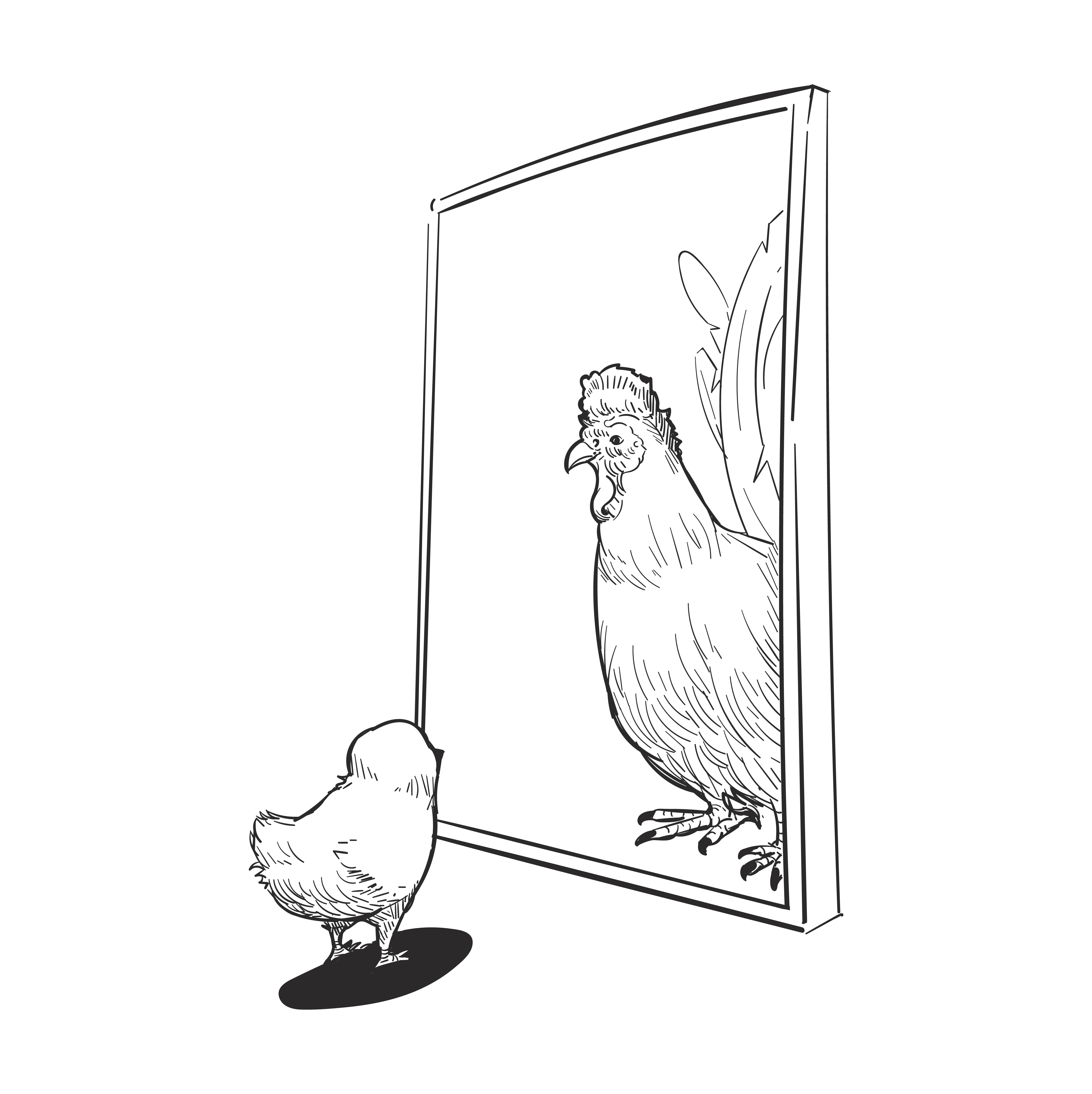 chicken looks in mirror see a roaster